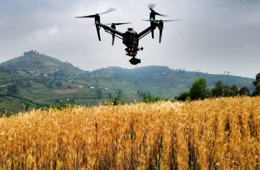 Using Satellite Images and Artificial Intelligence to Improve Agricultural Resilience (LVL 4)